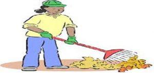 تنظيف_الشارع
